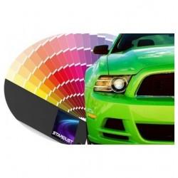 Peinture brillant direct 500gr